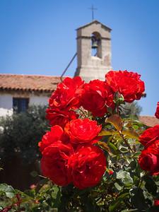 Roses and campanario, Mission San Juan Capistrano, CA