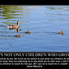 not only children 2