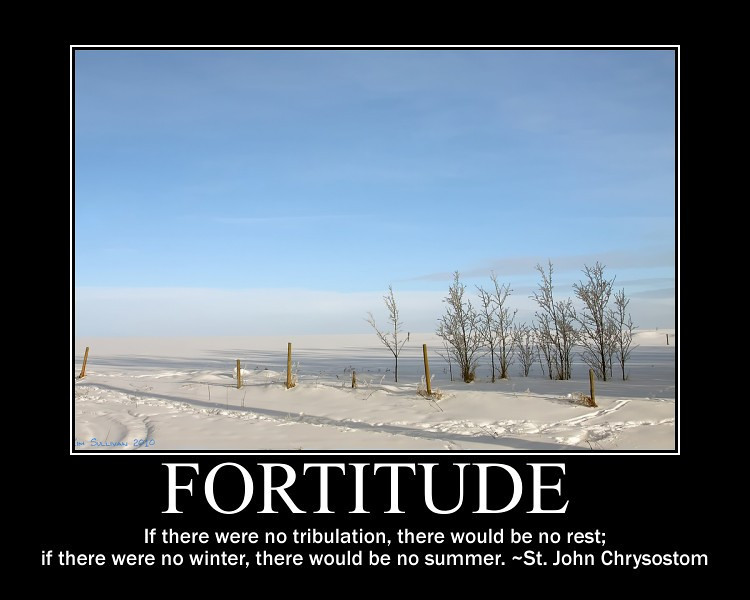 fortitude 1
