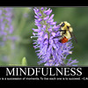 mindfulness 4