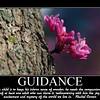 guidance 1