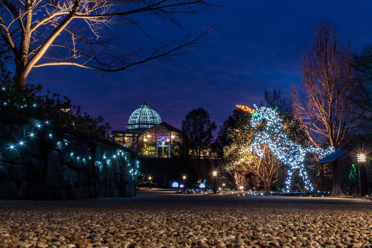 Ginter Gardenfest of Lights