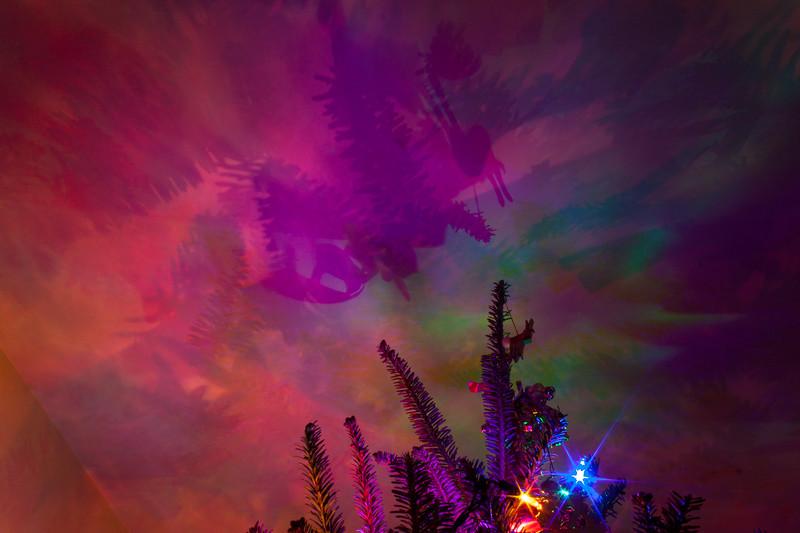 Christmas Tree Light Painting