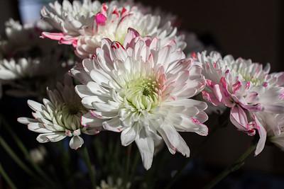 Erin's Flowers for Rhiannon