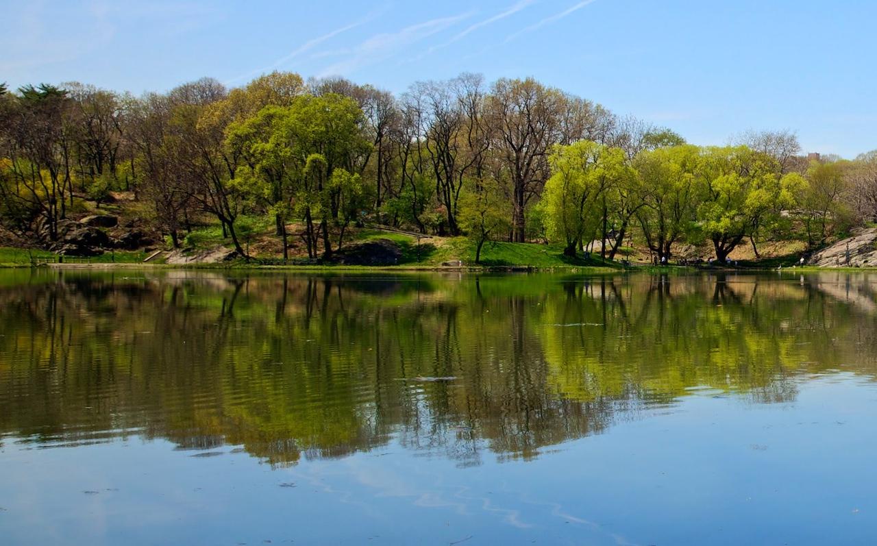 NYC Mirror Lake