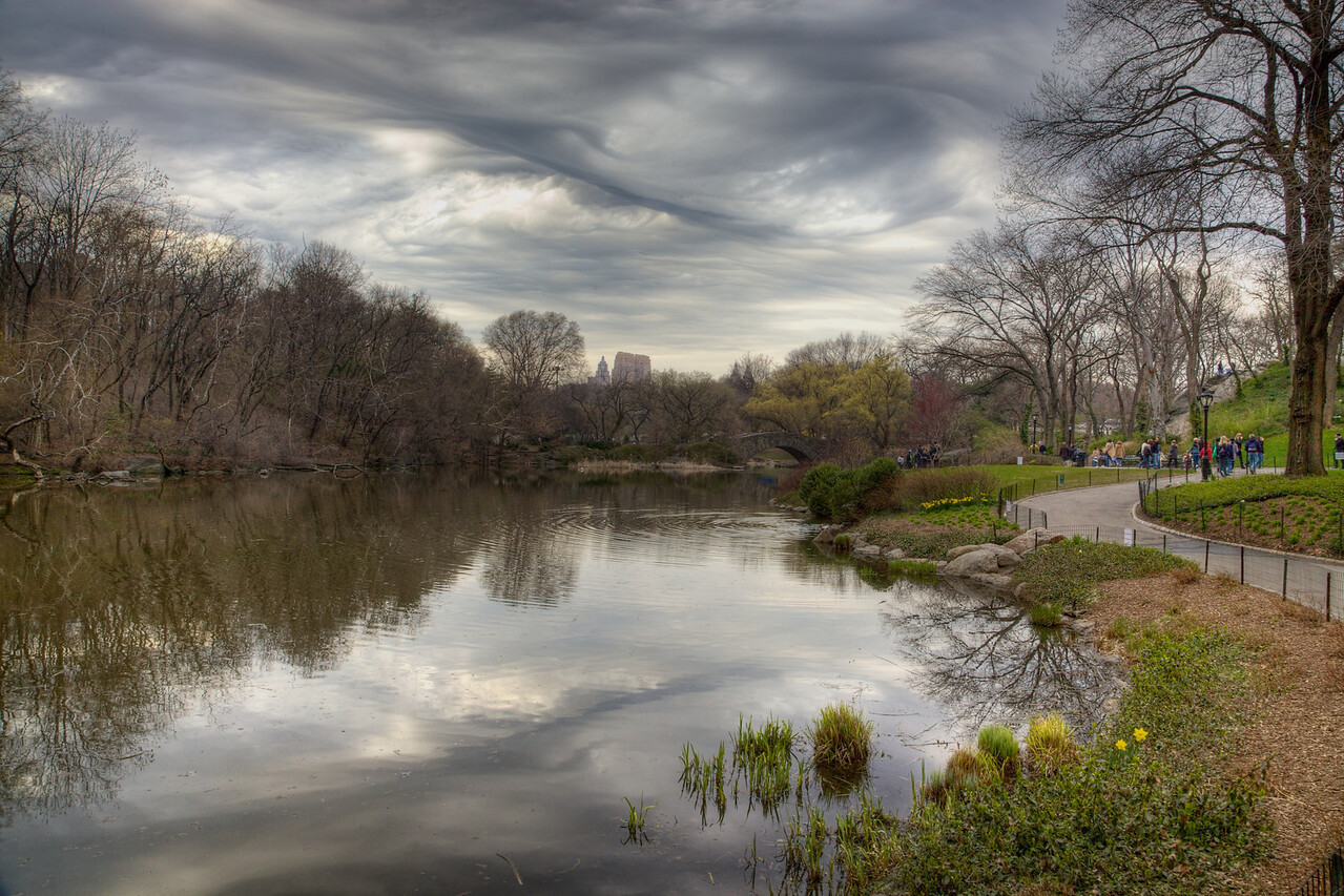 Dark Clouds in the Park