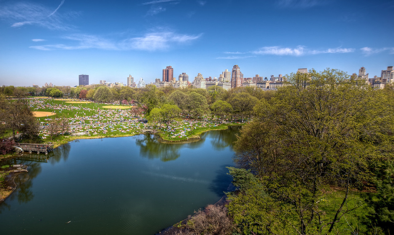 Central Park on a busy day