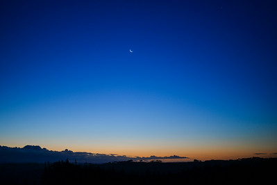 Night Sky; Riverhead; Auckland 2014