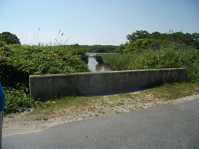 Channel before restoration: looking from the road/culvert into the marsh.