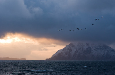 Passage from Dutch Harbor to Akatan , Aleutian  Islands, Alaska