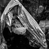 A young refugee girl hides from the rain under an emergency blanket in Moria refugee camp.<br /> Lesvos Island, Greece. October 2015.<br /> -----------<br /> Une jeune fille réfugiée se protège de la pluie sous une couverture d'urgence dans le camp de réfugiés de Moria.<br /> Ile de Lesbos, Grèce. Octobre 2015.
