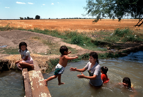 Irrigation Canal, Northern Mexico