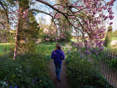 Corpus Christi gardens in spring