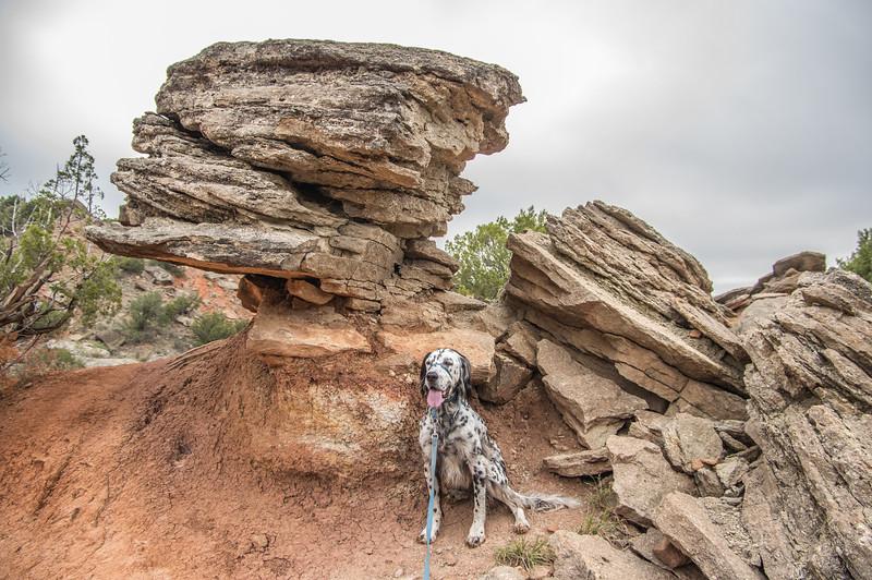 Rock Garden Trail, Palo Duro Canyon, Canyon, TX (Sep 2018)