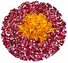 Colourful flower petals, Jaipur, India