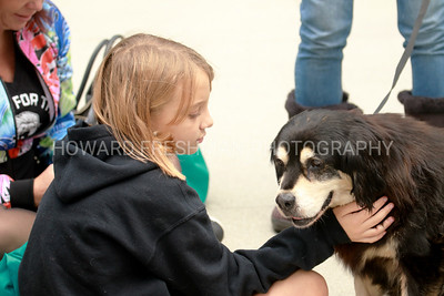 Pawlidays pet adoption fair