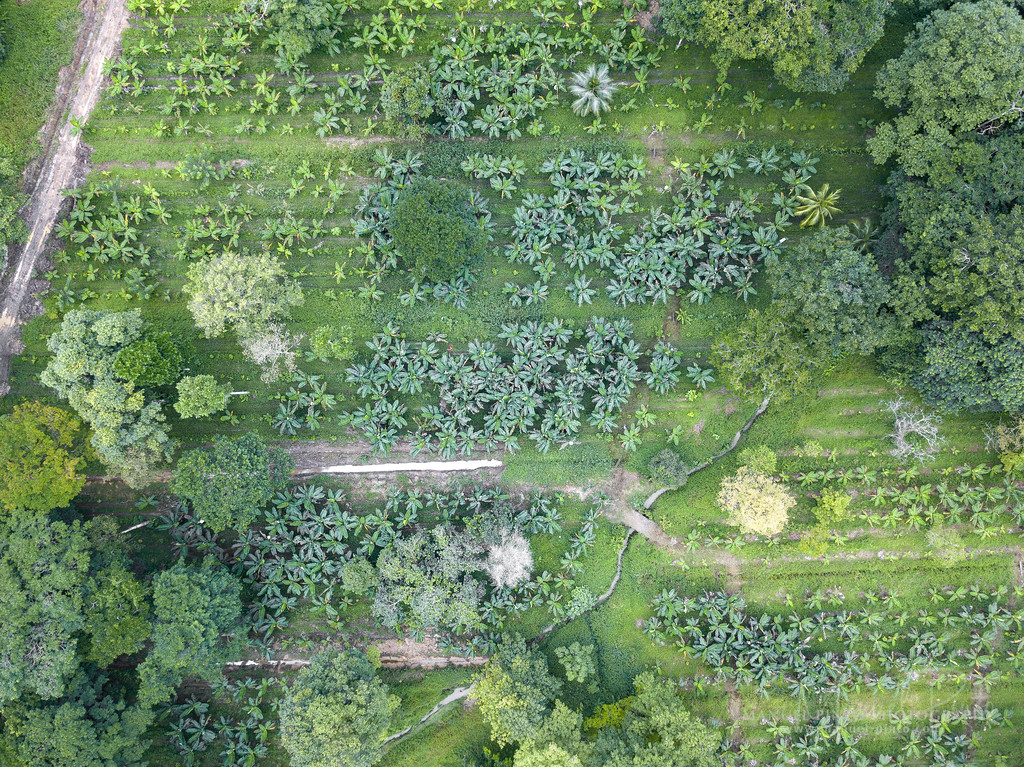 """Drone Aereal Photography<br />  <br /> by Manuel Pinto<br />  <a href=""""http://www.manuel-pinto.com"""">http://www.manuel-pinto.com</a>"""