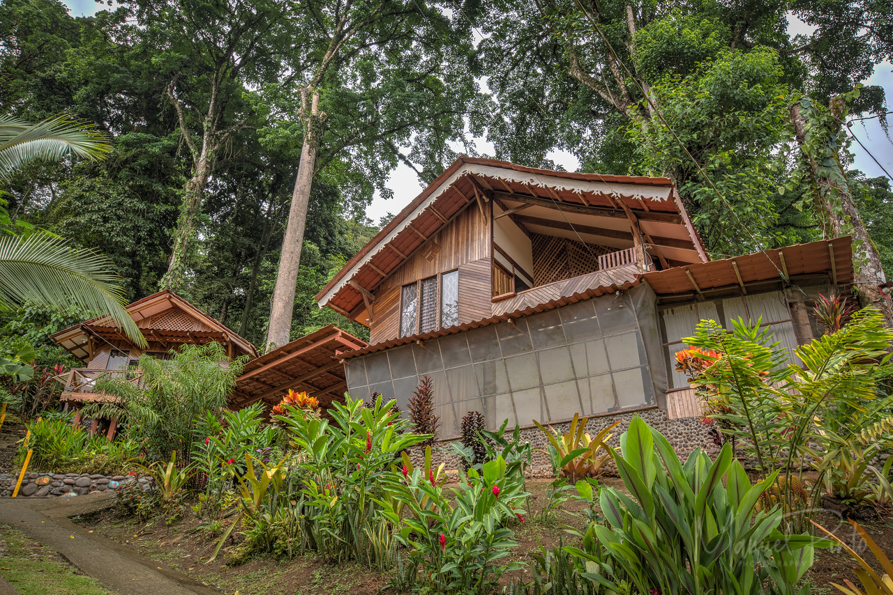 Over50 Retreats - Puerto Viejo -Costa Rica       photography by Manuel Pinto    www.manuel-pinto.com