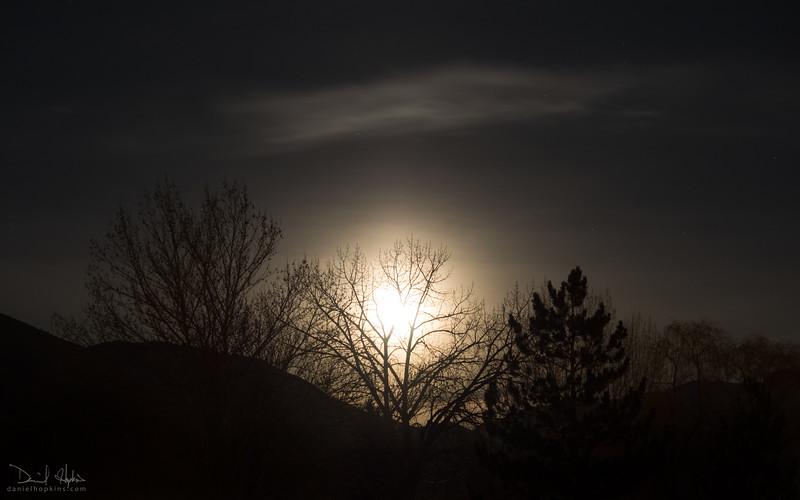 Midnight Sun Rising
