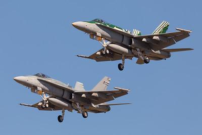 Twin Hornets