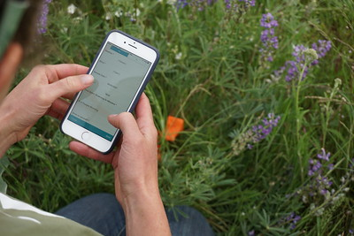 iNaturalist in the Field