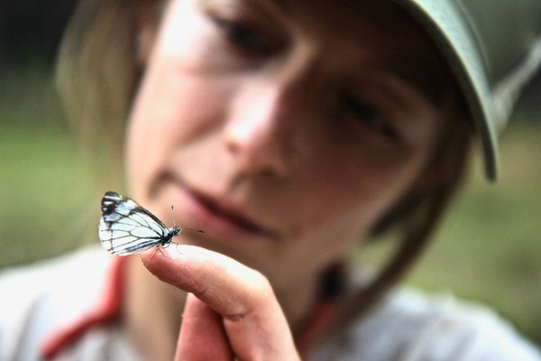 Katie Guetz holding a Pine White butterfly PC: Dominic Oakes