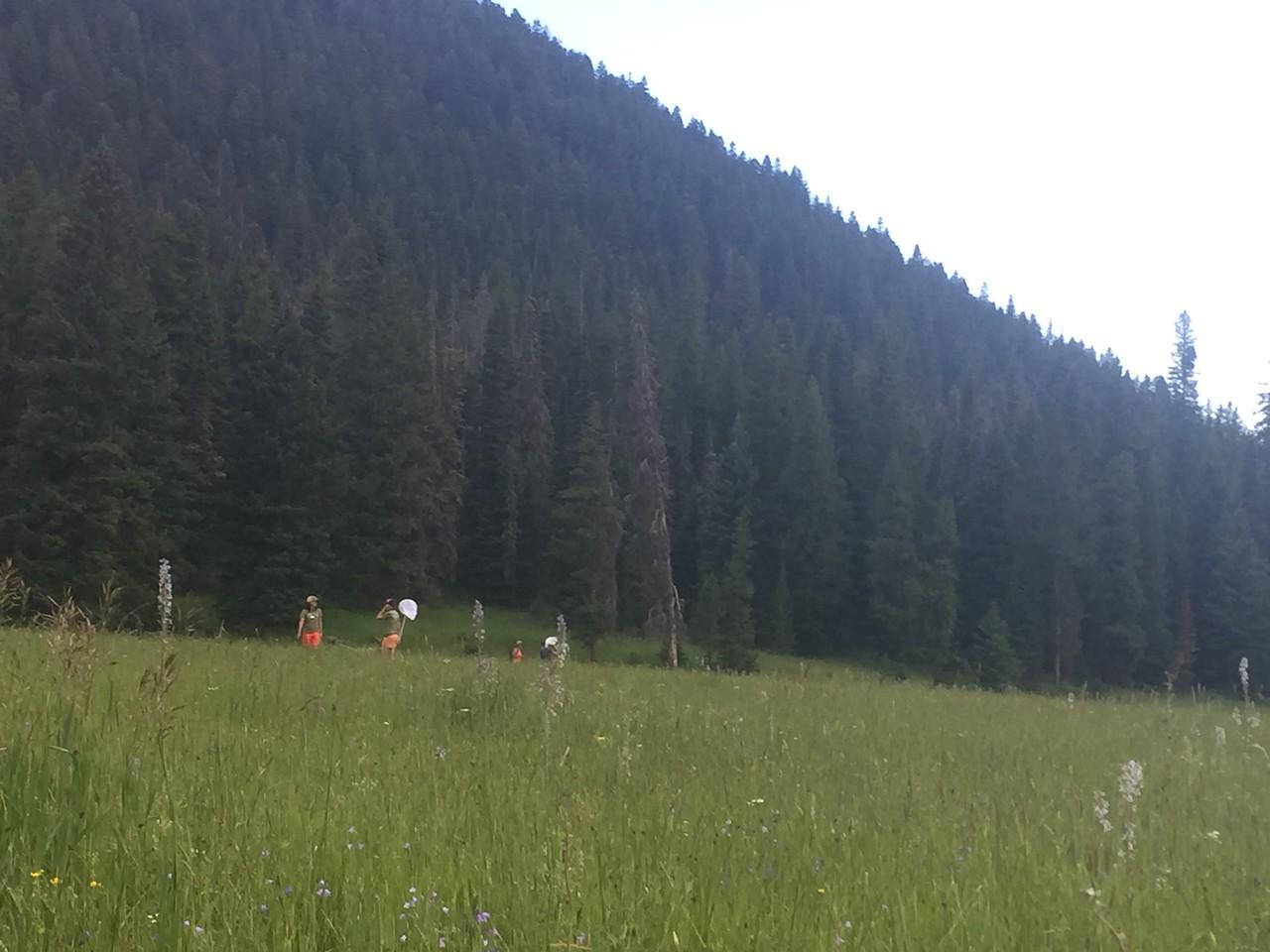 Field Training Day at History Rock, Montana