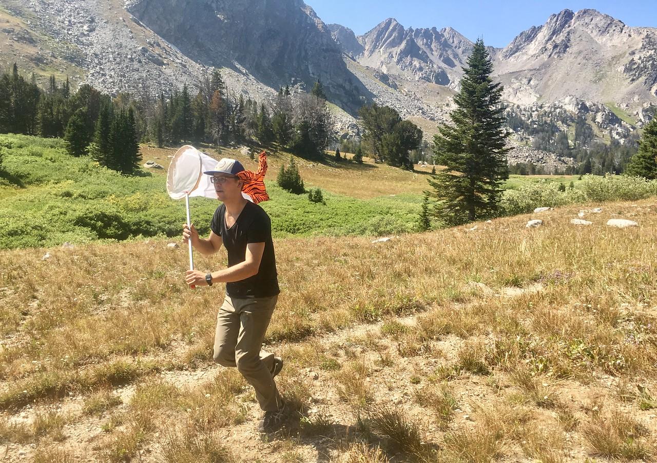 Chasing butterflies in Bear Basin, Montana PC: Emma Bode