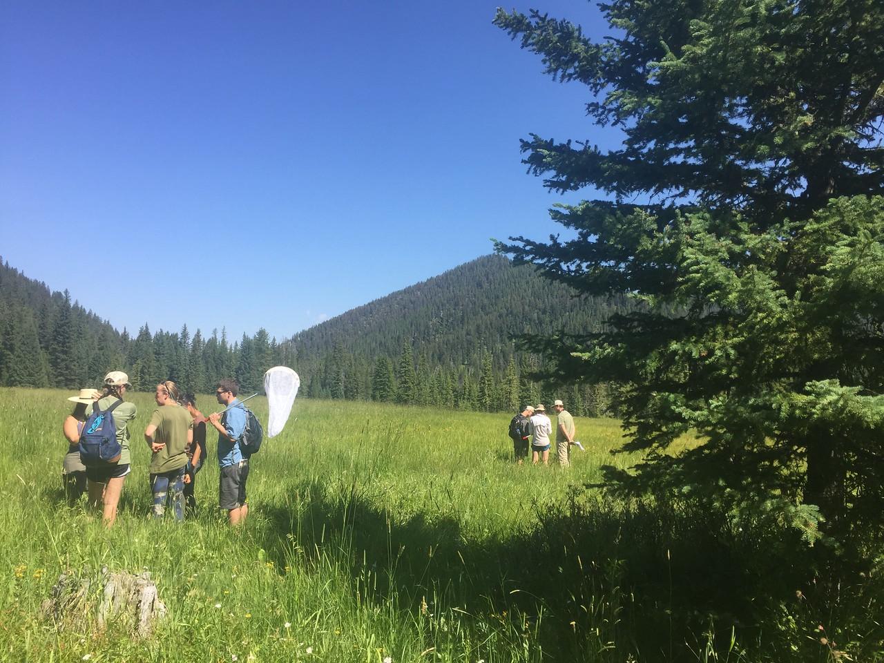 Field training at History Rock, Montana