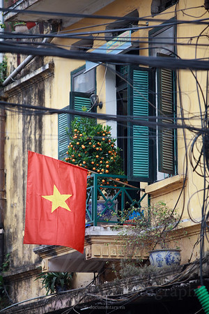 Red flag and kumquat tree