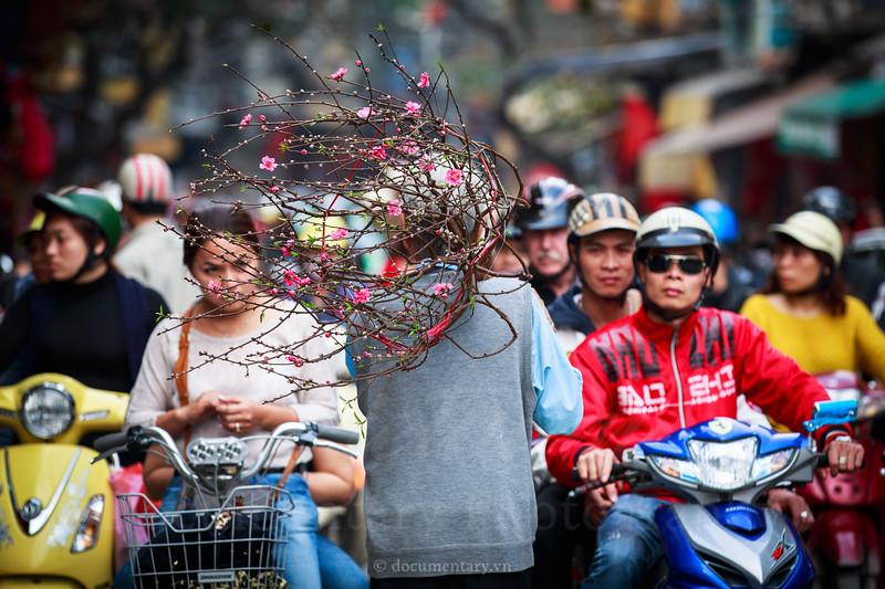 documentary.vn-20130205-034.jpg