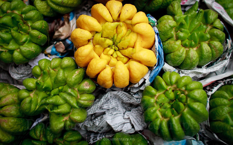 Buddha's hand fruits