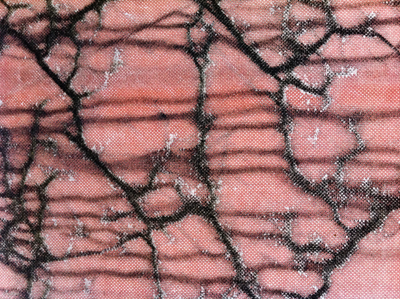 213 - Plastic veins