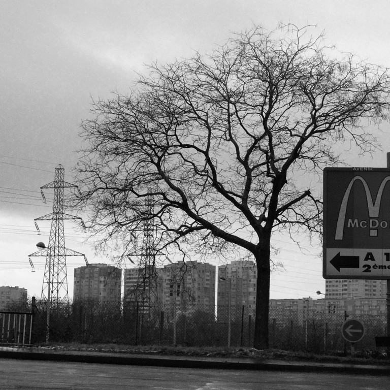 013 - Stand up Tree<br /> --------------------------------<br /> Je passe devant cet arbre tout les matins et je me demande comme il peut être toujours debout, coincé entre les autoroutes, les pylônes électriques, les barres d'immeubles et ce panneau publicitaire qui en a déjà mangé la moitié.