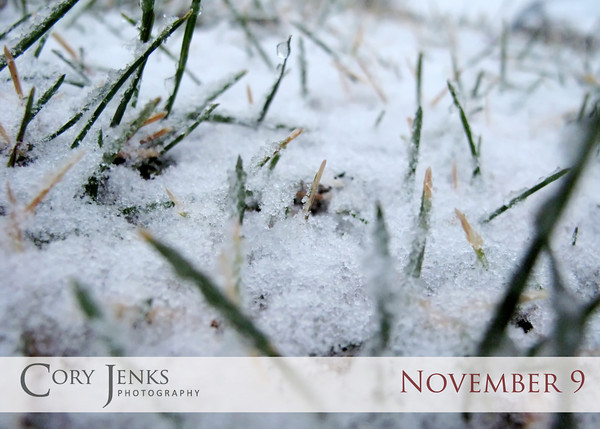 Project 365: November 9 - First Snow. First snow arrived today and two notable things; it is not October 31 and it is not 20 inches.....