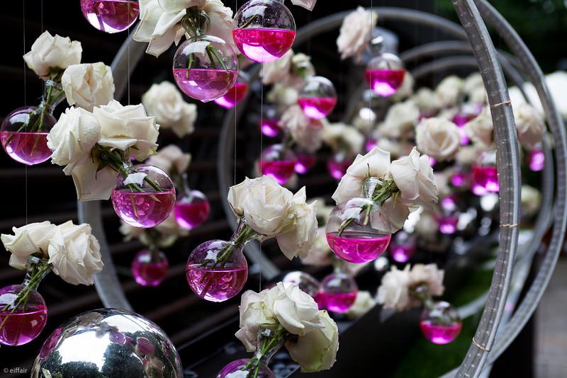 157 - Roses