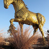 Project 365: March 1 - Stallion. This golden sculpture made from hundreds of golden washers is simply stunning. Sculpted by Jim Dolan of Montana.