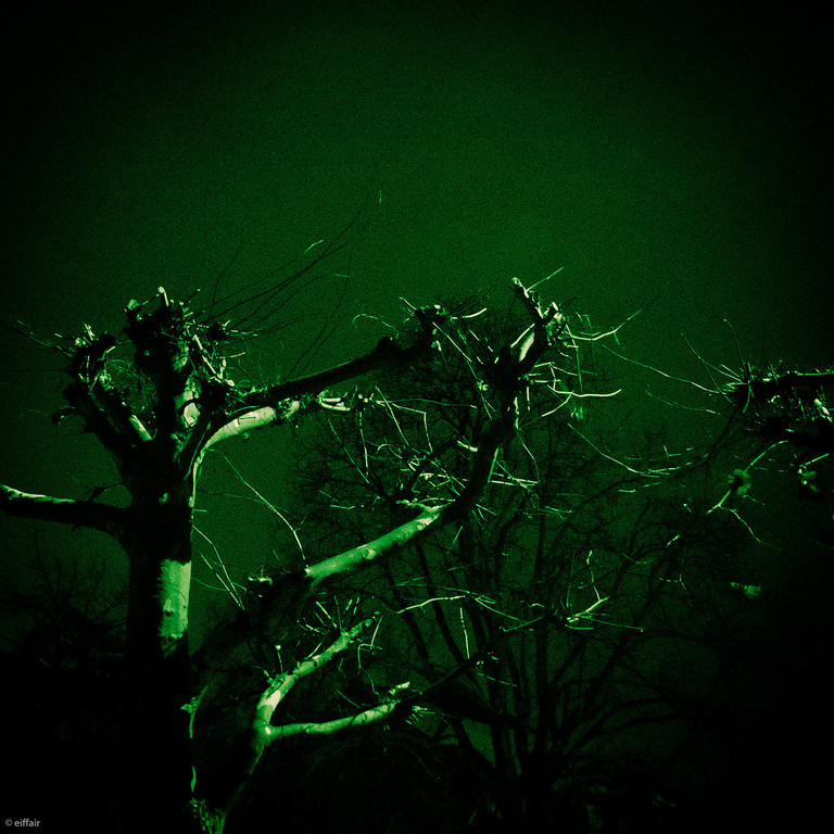 336 - Green Night