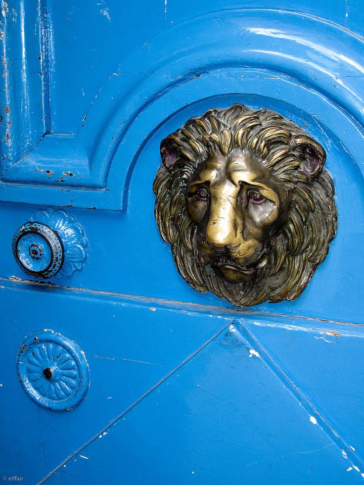 126 - Blue Lion