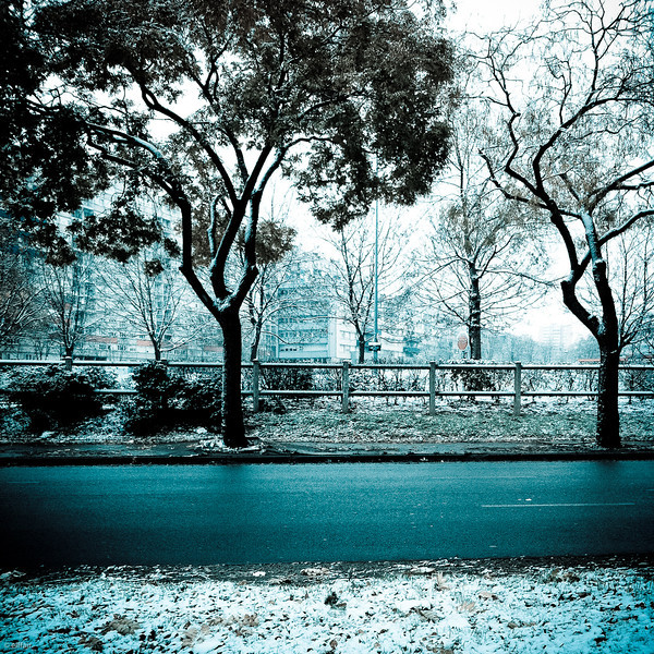 333 - Snow