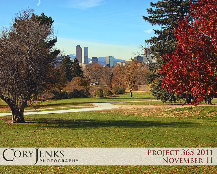 Project 365: November 11 - Skyline. An absolutely gorgeous Colorado day, looking west towards downtown Denver and the Rocky Mountains.