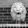 Project 365: June 25 - Fountain Head. The sounds of water pouring out of this lion head fountain actually made me 'feel' cooler in the 90-plus-degree heat.