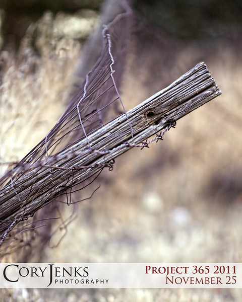Project 365: November 25 - Mending Fences. Take time to mend those fences that over time have become weathered and broken, for you never know when you may need to rely on those fences during tougher times. A mended fence is always stronger going forward.