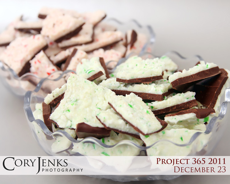 Project 365: December 23 - Candy Cane Bark. The annual baking tradition begins. Candy cane bark meticulously peeled from both the peppermint and spearmint trees in the magical candy cane forest and dipped in dark chocolate.