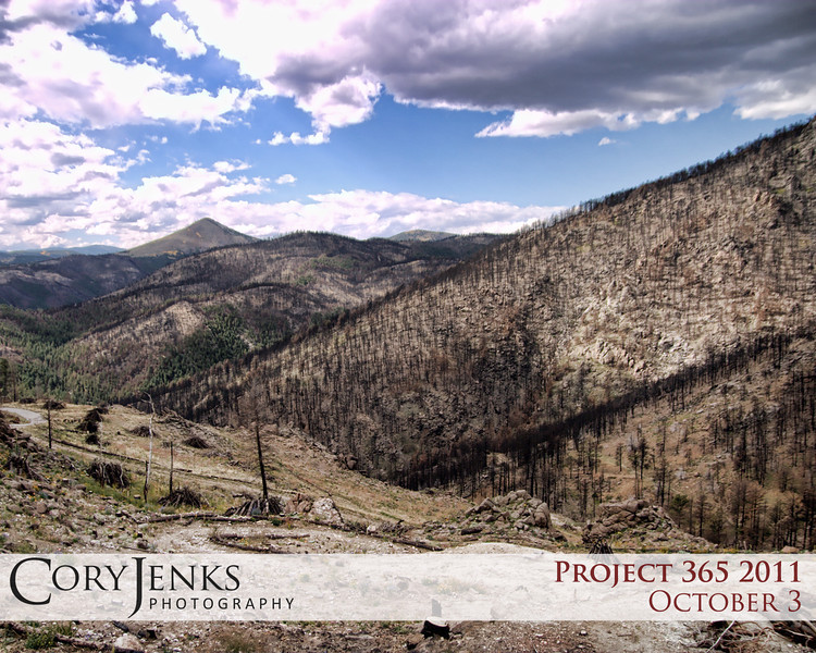 Project 365: October 3 - Only You. The remnants of the Fourmile Canyon wildfire just west of Boulder.