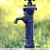Project 365: October 5 - Spigot. I love the character that some objects can display by simply being.