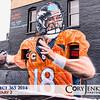 Project 365: February 2 - PFM. Hope everyone enjoys the Super Bowl today! Go Broncos!
