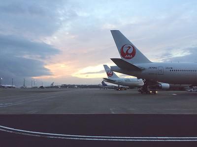 Lovely morning in Tokyo