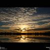 Project 365: November 4 - Sunrise. Absolutely amazing sunrise in Colorado.