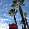 Project 365: November 30 - Bauble and Palms. A little holiday decoration, California style.